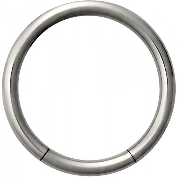 14g 1/2 Inch Surgical Steel Seamless Segment Hoop Piercing Ring, Forbidden Body Jewelry