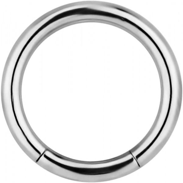 14g 3/8 Inch Surgical Steel Segment Hoop Ring Circular Barbell, Forbidden Body Jewelry