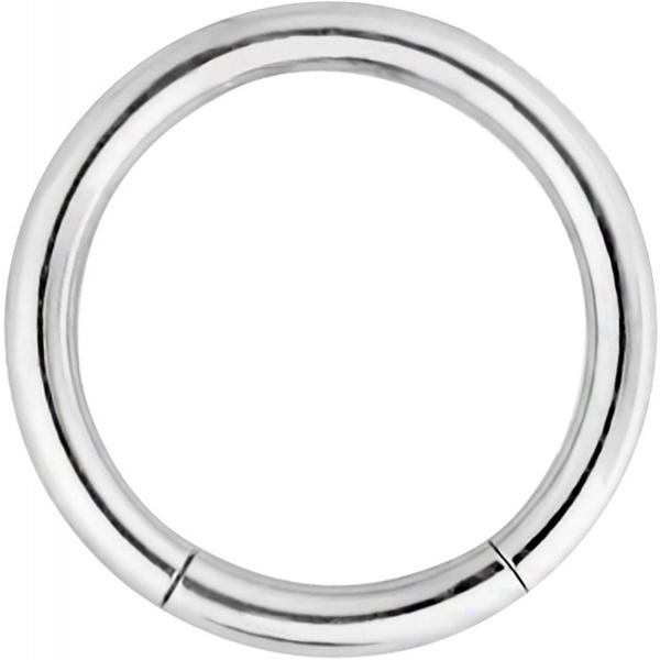 16g 5/16 Inch Surgical Steel Segment Hoop Ring Circular Barbell, Forbidden Body Jewelry
