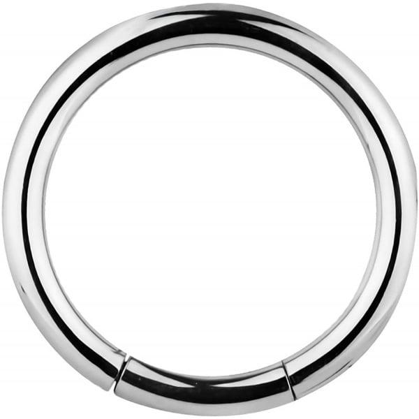 12g 1/2 Inch Surgical Steel Segment Hoop Ring Circular Barbell, Forbidden Body Jewelry